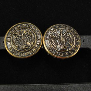 Black Eagle with Gold Rim Button Earring