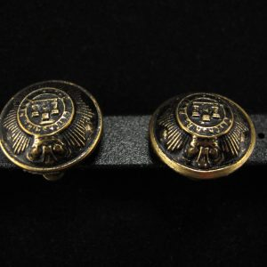 Gold & Black Domed Button Earring